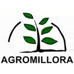 Agromillora